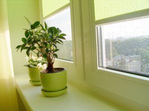 Prečo sa rosia (plastové) okná?
