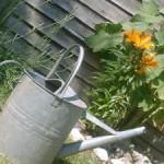 Poriadok v záhrade nadovšetko