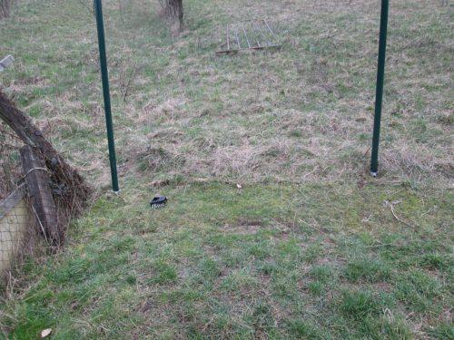 sloupy pro plot