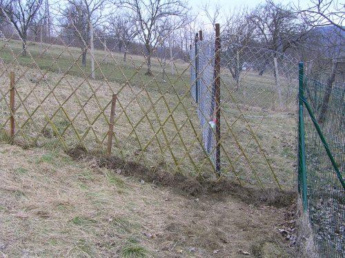 vŕbový plot